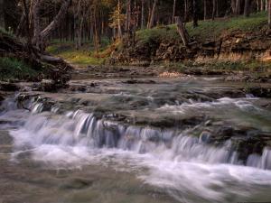 Creek and Ozarks, Montana, USA by Gayle Harper