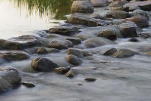 Headwaters of the Mississippi River, Itasca, Minnesota by Gayle Harper