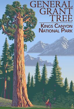 General Grant Tree - Kings CaNYon National Park, California