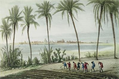 https://imgc.allpostersimages.com/img/posters/general-view-of-cadiz-engraved-by-john-pye-1782-1874_u-L-PLFTMP0.jpg?artPerspective=n