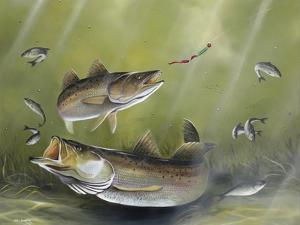 Speckled Trout by Geno Peoples