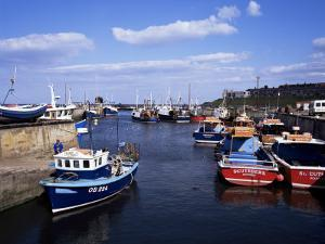 Harbour, Seahouses, Northumberland, England, United Kingdom by Geoff Renner