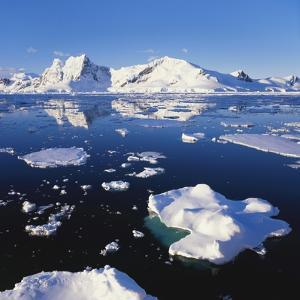 Ice Floe on the Antarctic Peninsula by Geoff Renner