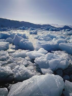 Ice on Antartica, Close Up by Geoff Renner