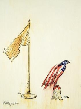 American Eagle Acquires Us Flag Colouration, 1985 by George Adamson