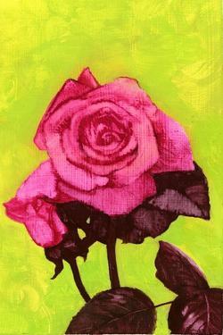 Bright Rose, 1980s by George Adamson