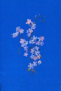Forget-Me-Not, 1960s by George Adamson