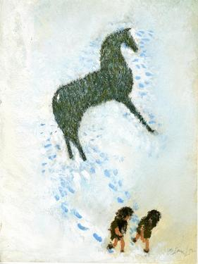 Not a White Horse by George Adamson