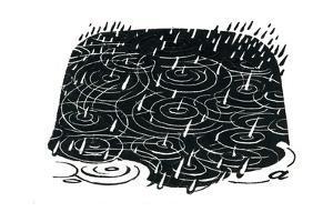 Rain Puddle Design by George Adamson