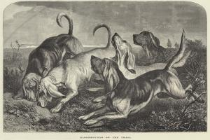 Bloodhounds on the Trail by George Bouverie Goddard