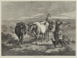 Morning on the Moors by George Bouverie Goddard