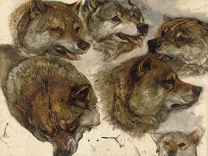 Studies of Huskies' Heads by George Bouverie Goddard
