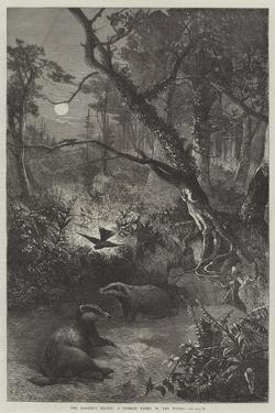 The Badger's Haunt, a Summer Night in the Woods by George Bouverie Goddard