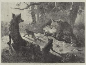 The Fox Family at Home by George Bouverie Goddard