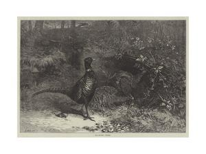 The Months, October by George Bouverie Goddard