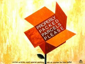 Properly Packed Parcels Please by George Brzezinski Karo