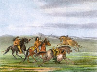 Racial, Comanche Horses by George Catlin