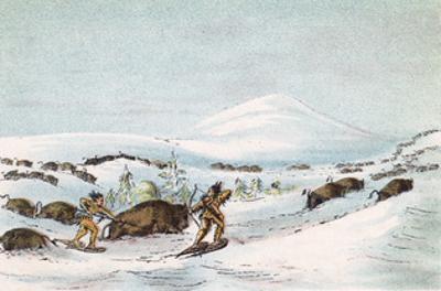 Racial, Hunting Buffalo by George Catlin