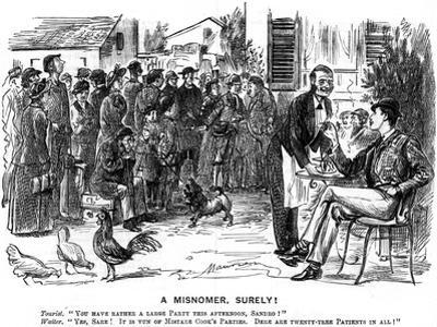 A Misnomer, Surely!, 1880 by George Du Maurier