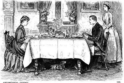 Circumstantial Evidence, 1886