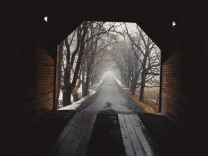 A View Down a Tree-Lined Road from Inside the Meems Bottom Bridge by George F. Mobley