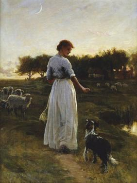 A Shepherdess with her Dog and Flock in a Moonlit Meadow by George Faulkener Wetherbee