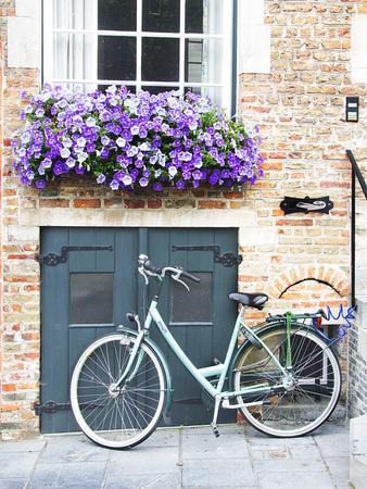 Brugge Door and Bicycle