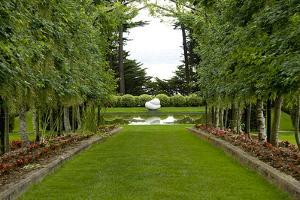 New Zealand Garden by George Johnson