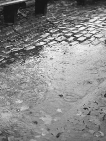 Rainy Street by George Marks