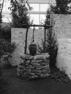 Stone Built Well by George Marks