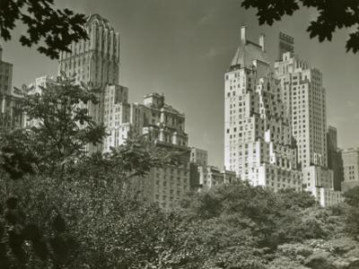 View of New York From Central Park by George Marks