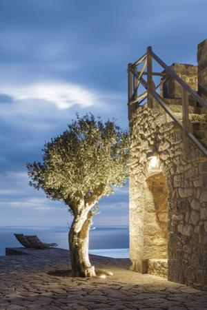 Tainaron Blue Retreat in Mani, Greece. Exterior View of an Alcove in a Stone Wall and a Tree by George Meitner