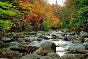 Autumn Colors, Lost River, New Hampshire by George Oze