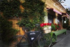 Bicycle at a Bistro, Napa Valley, California by George Oze