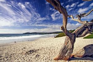 Carmel Beach, California by George Oze