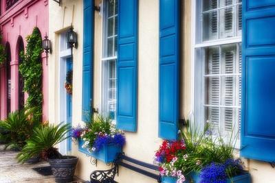 Charleston Colors IV