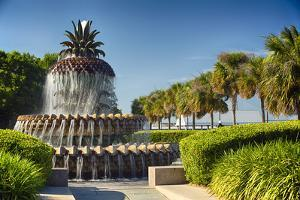 Charleston Pineapple Fountain by George Oze
