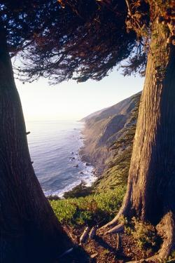 Coastal View at Ragged Point, Big Sur, California by George Oze