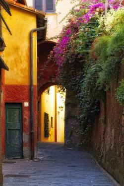 Colorful Alley in Portofino by George Oze