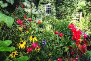 Garden State Dream Garden by George Oze