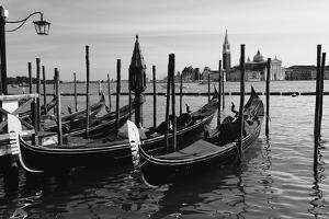 Gondolas of St Marks Square, Venice, Italy by George Oze