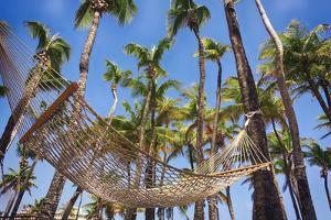 Hammock in a Palm Grove, Puerto Rico by George Oze