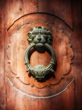 Lion Face Door Knocker in Florence by George Oze