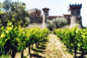 Napa Valley Dream Castle by George Oze