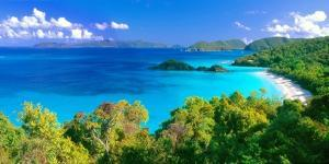 Panoramic View of Trunk Bay, St. John, USVI by George Oze