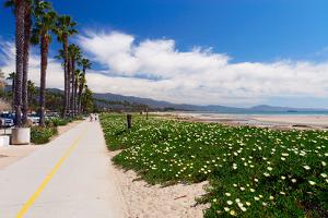 Santa Barbara Coastline, California by George Oze