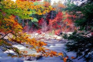 Swift River Autumn Scenic, New Hampshire by George Oze