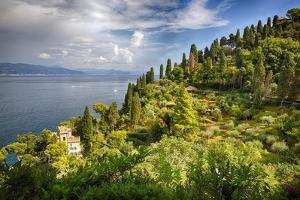 Terraced Hillside at the Coast, Portofino, Italy by George Oze