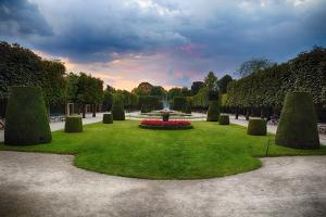Topiari Shrubs in Schonbrunn Palace Garden by George Oze