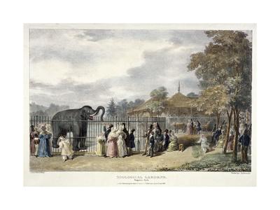 Zoological Gardens, Regent's Park, London, 1835
